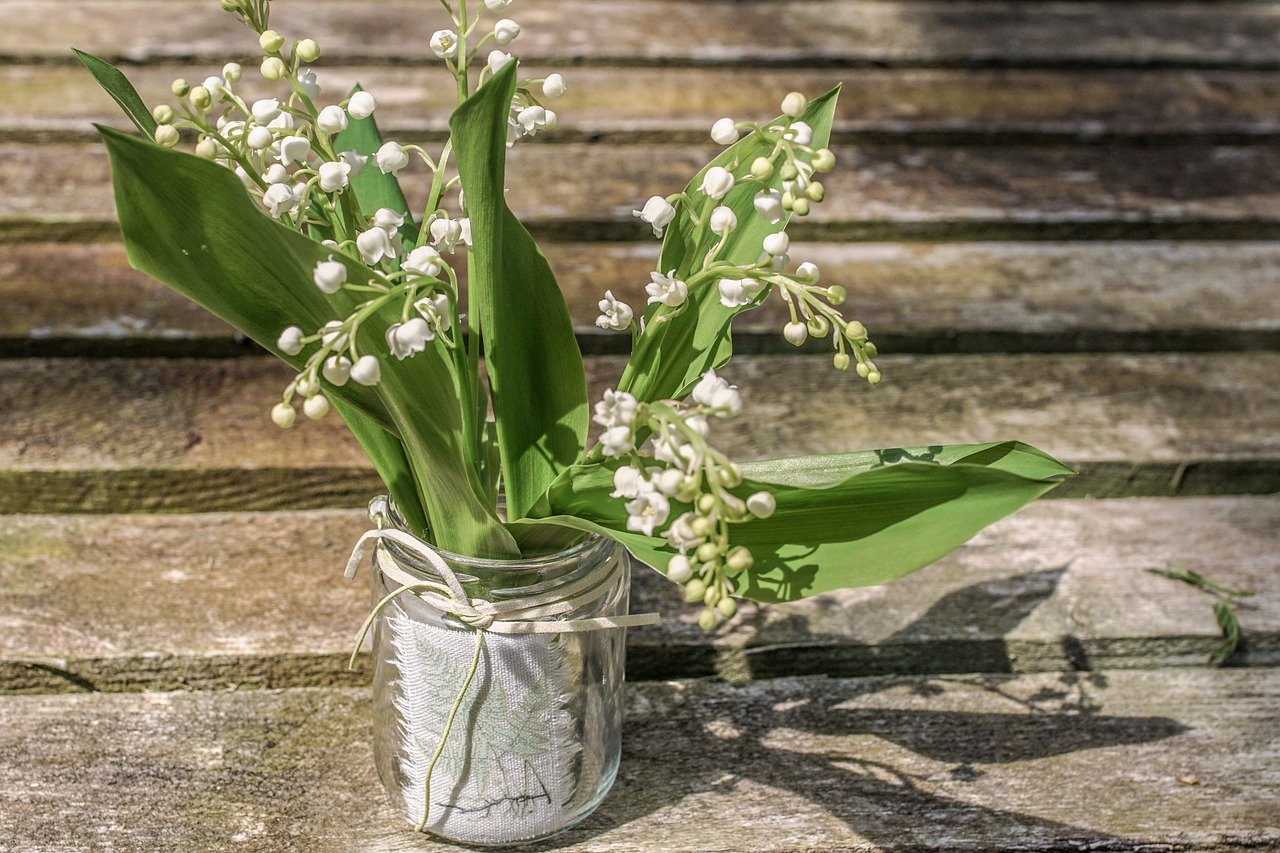 Lily of valley flower